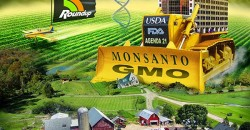Monsanto Demands Retraction for WHO's Glyphosate Cancer Connection