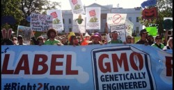Historic: Vermont clears obstacles, confirms first law requiring mandatory GMO labels on food