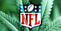 Ex-NFL Player Claims that Over 60% of Current Players Smoke Weed