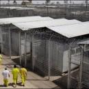 Could FEMA Camp Rumors Be True? Mississippi Unveils FEMA Safe Room