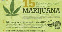 15 Things Everyone Should Know About Marijuana