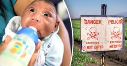"""It's Not the Zika Virus"" — Doctors Expose Monsanto Linked Pesticide as Cause of Birth Defects"