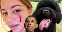 Obama's Dog Attacks White House Guest