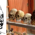 Paracas Elongated Skull DNA Tests Not Human