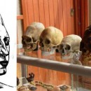 Paracas Elongated Skull DNA Tests Not Human